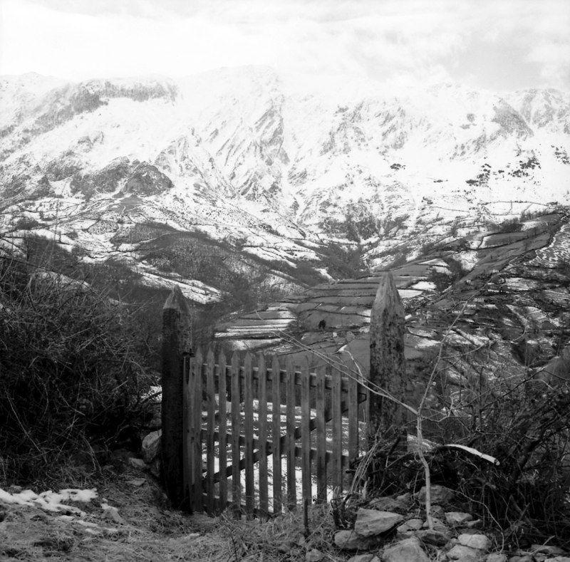 Pueblo de Muriellos (Riosa) con la Sierra del Aramo al fondo. Crédito de imagen: archivo de José Ramón Lueje, Pueblo de Asturias (Gijón).