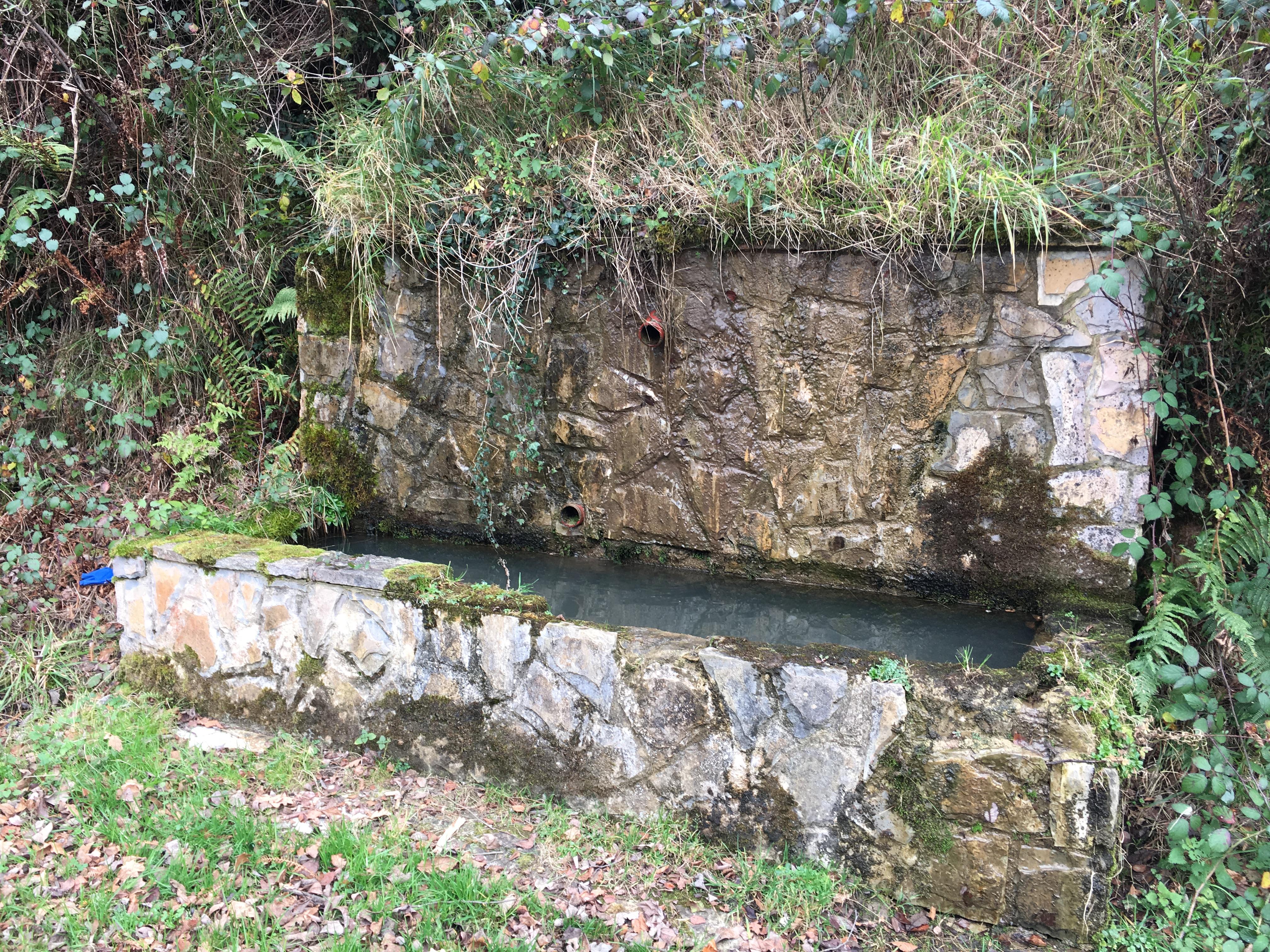 Valle del río Llamo (Riosa): Fuente Les Foxaques