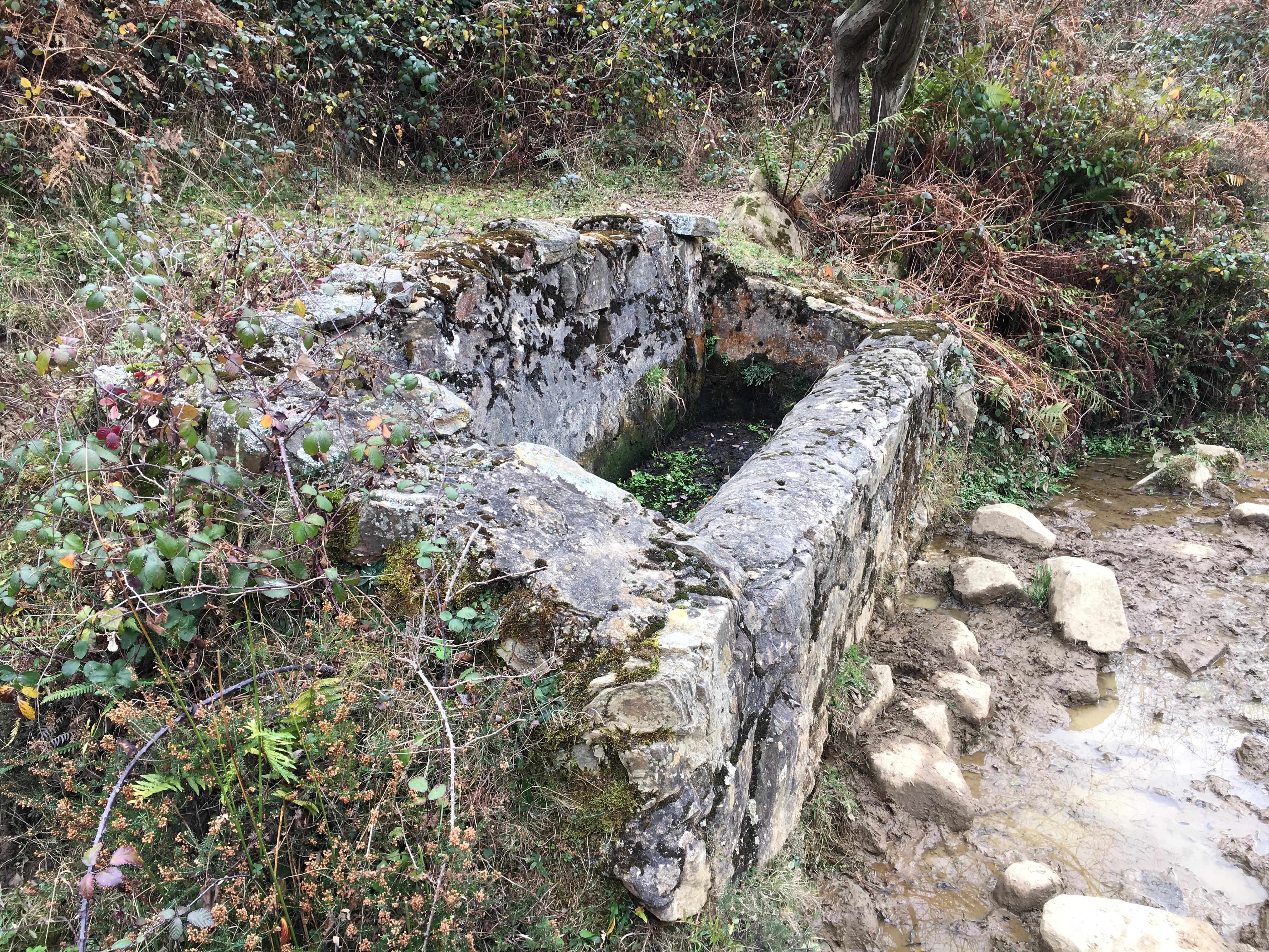 Valle del río Llamo (Riosa): Fuente Los Pontones