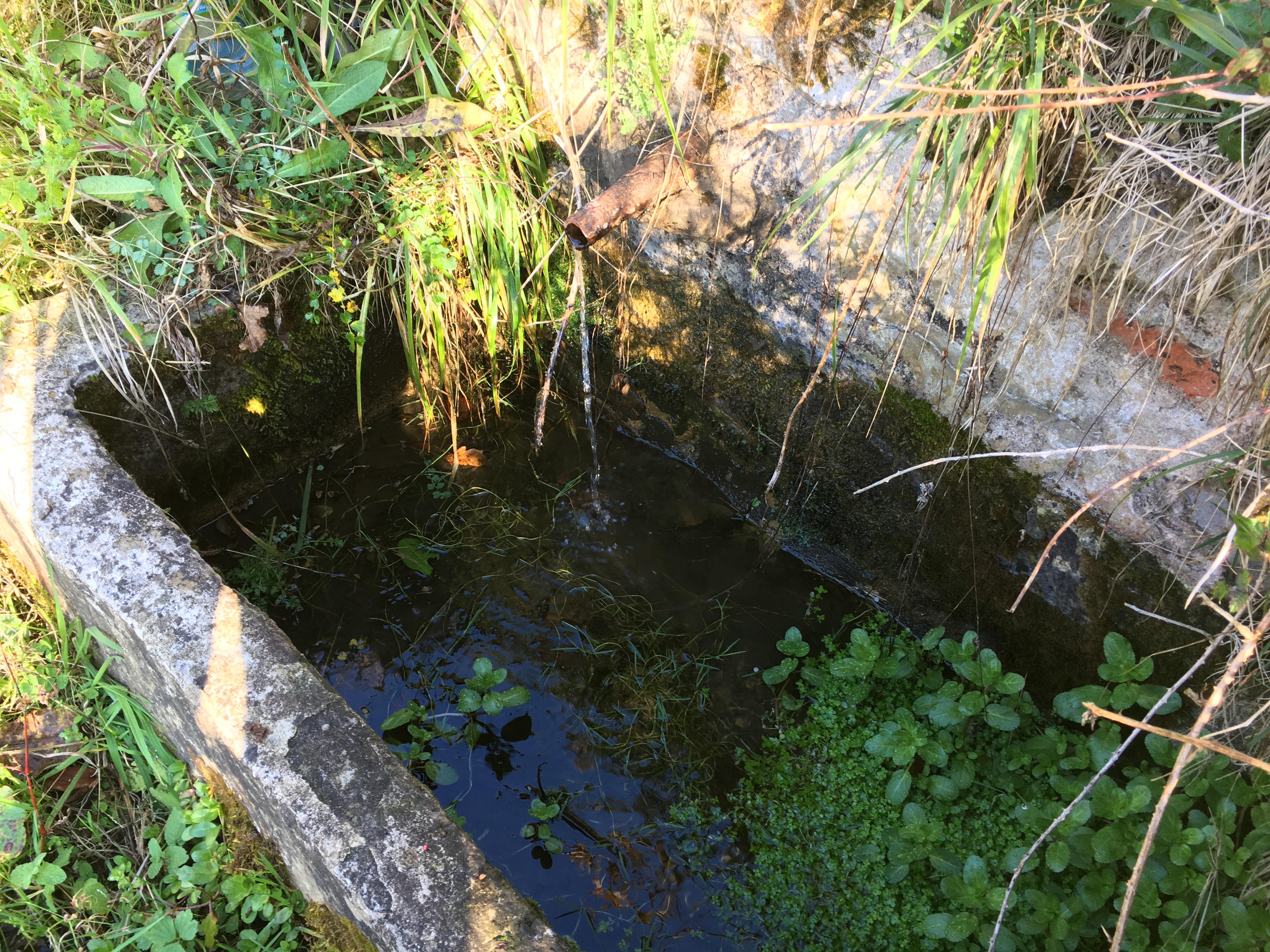 Fuente El Fresnial (Riosa, Valle de La Xuncar)