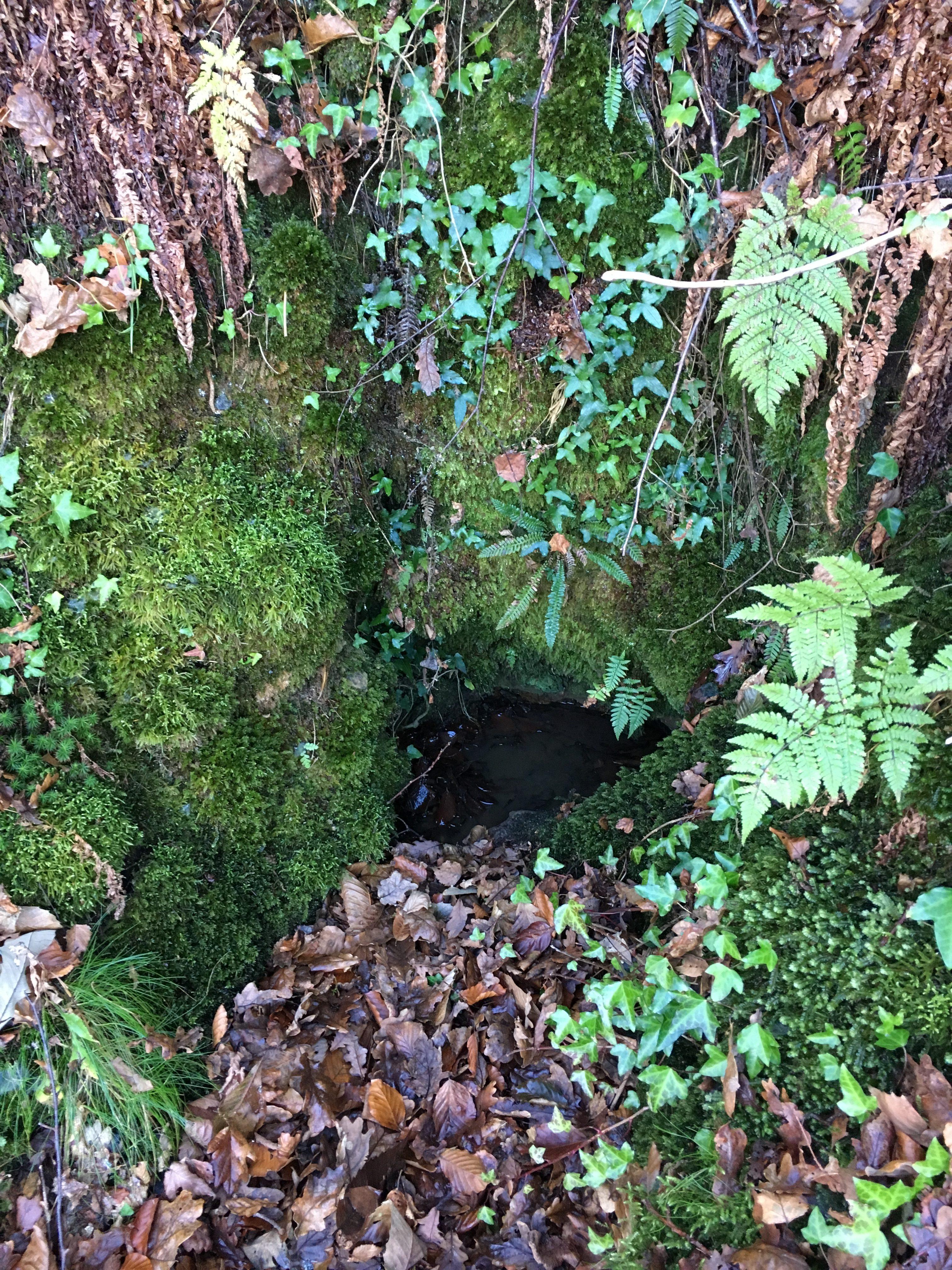 Fuente Malia (Riosa, Valle de La Xuncar)