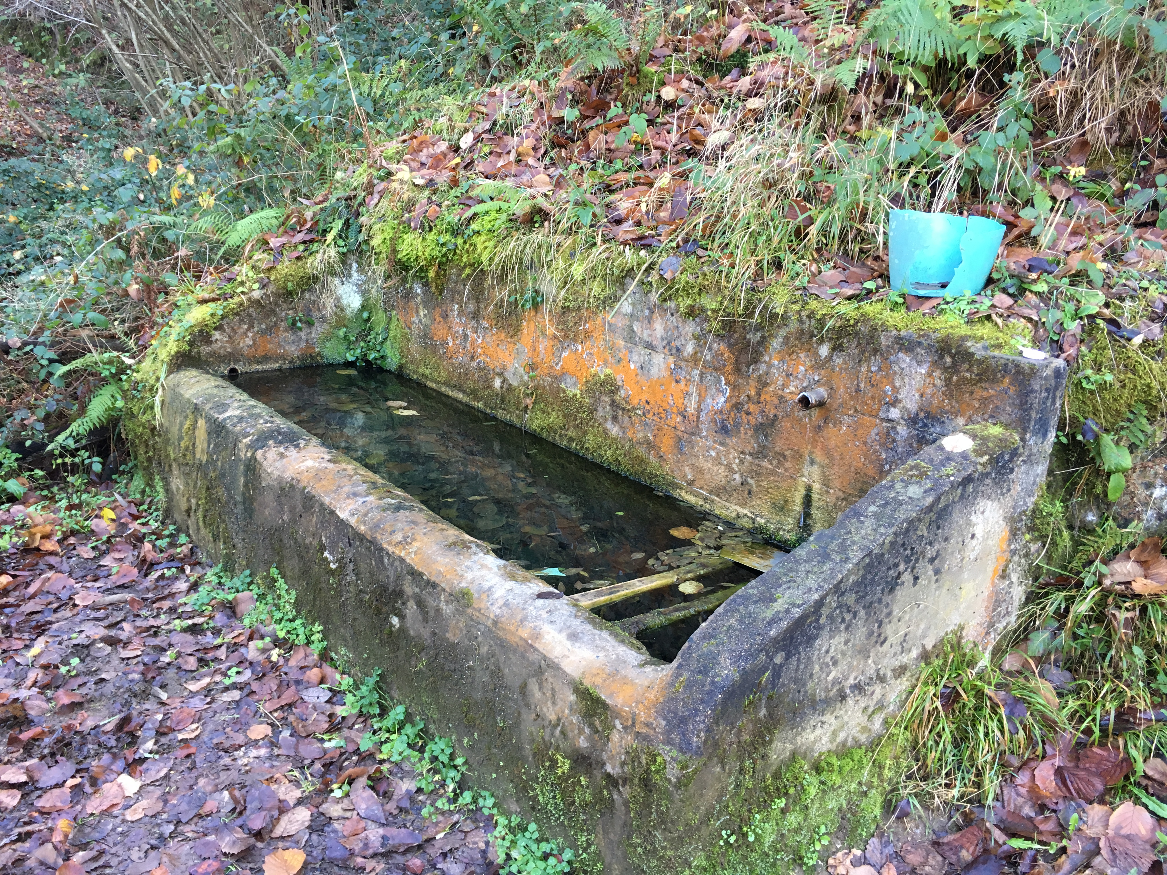 Fuente de Laital o La Cuesta (Riosa, Valle de La Xuncar)