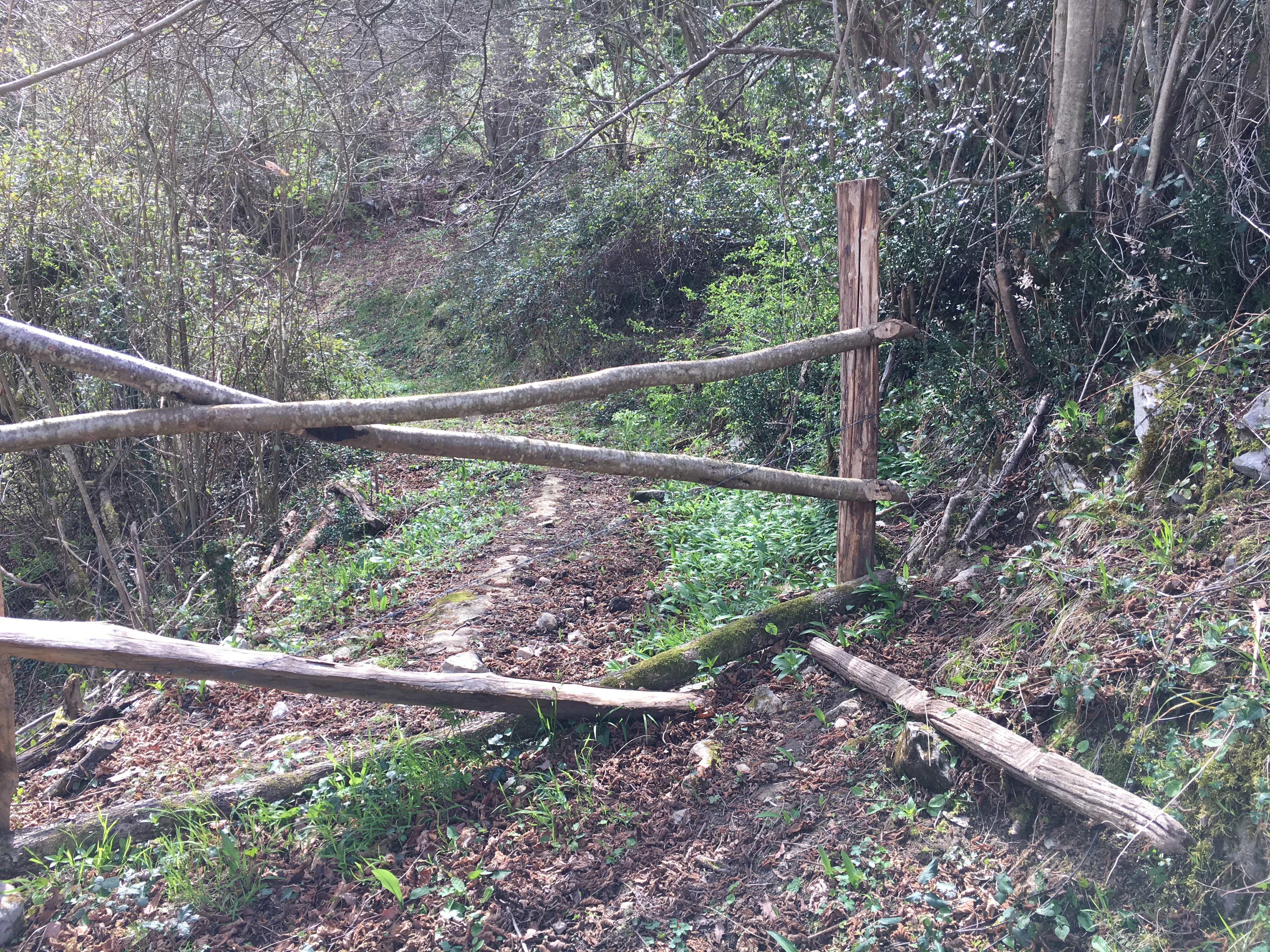 Coluvión de Llamo: camino Rioseco-Manantial del Río Llamo sobre la traza de la Conducción a Oviedo desde Fuentes Calientes, Cortes y Lindes (Quirós)
