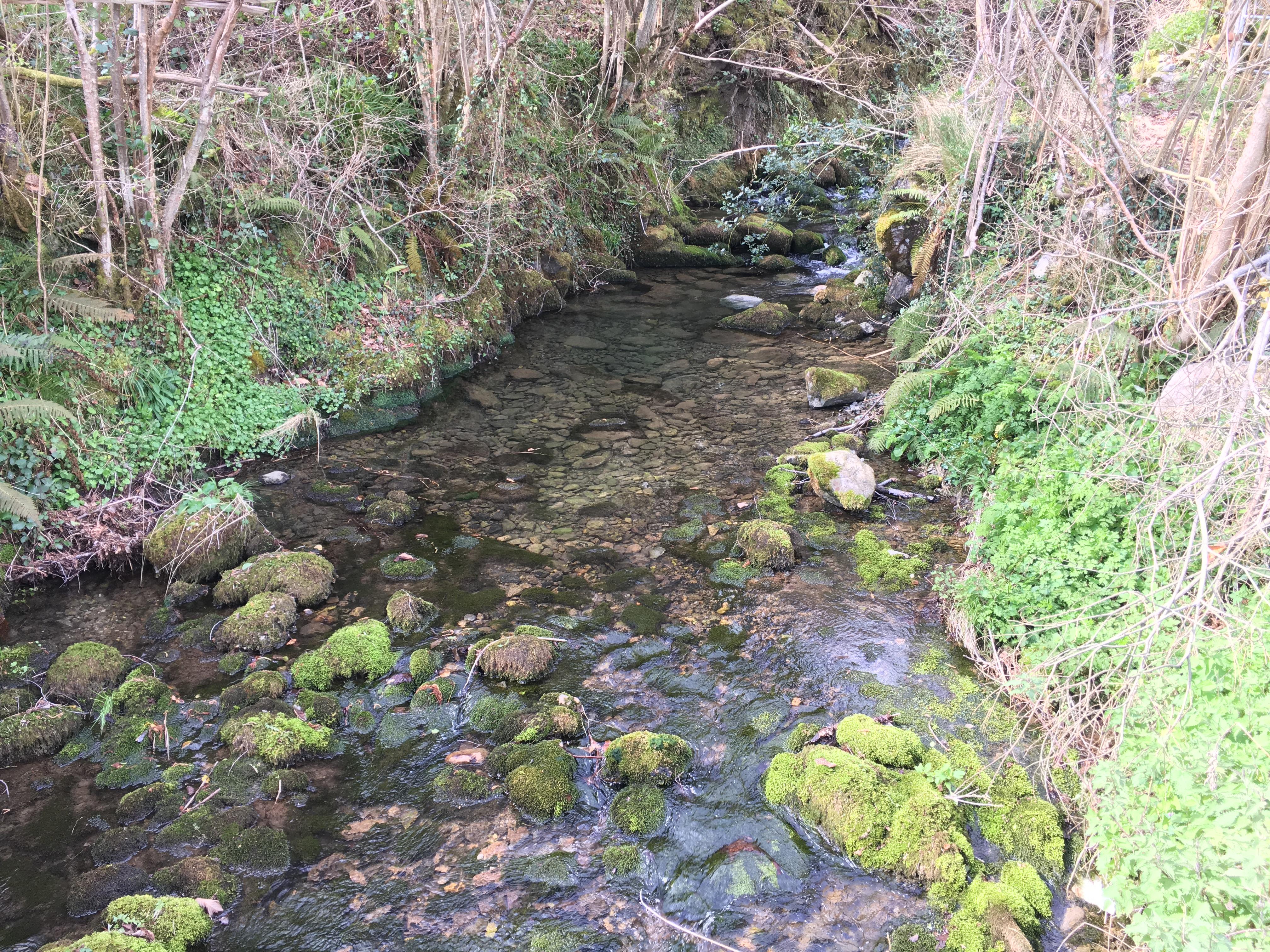 Coluvión de Llamo: río Llamo