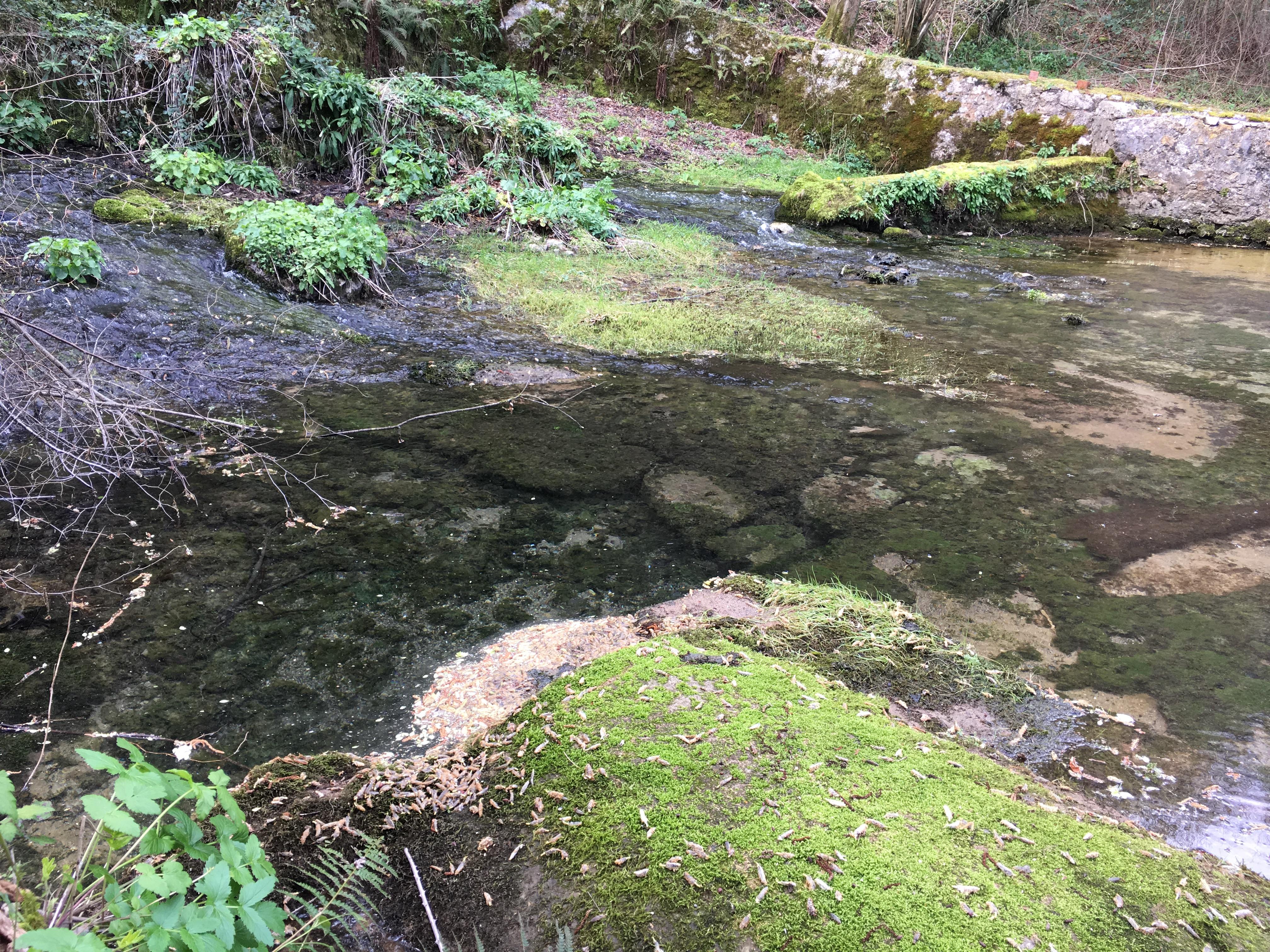 Coluvión de Llamo: captación de la Conducción del Aramo en el manantial del río Llamo