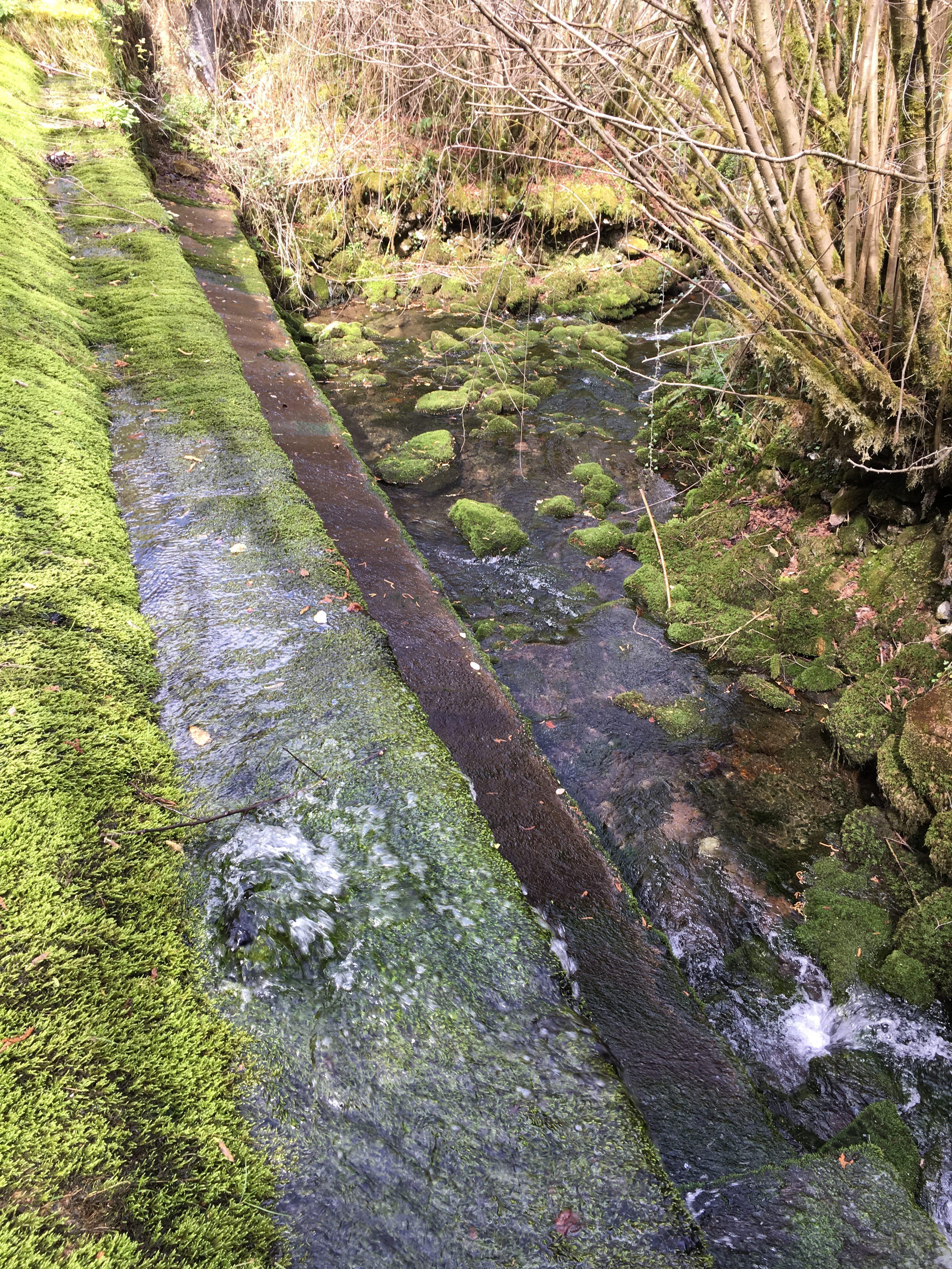 Coluvión de Llamo: captación de la Conducción del Aramo en el manantial del río Llamo, represa