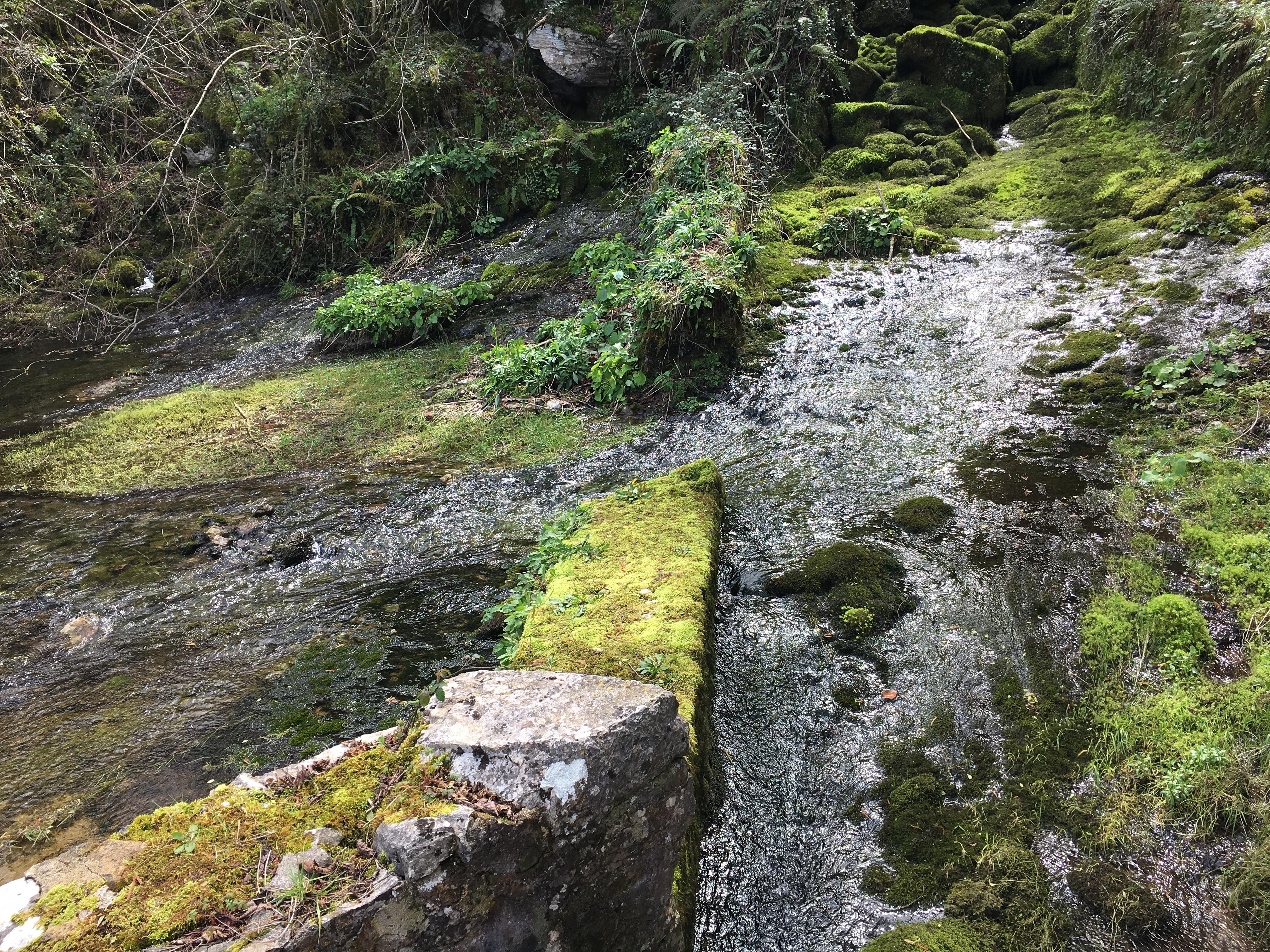 Coluvión de Llamo: captación de la Conducción del Aramo en el manantial del río Llamo (manantial)