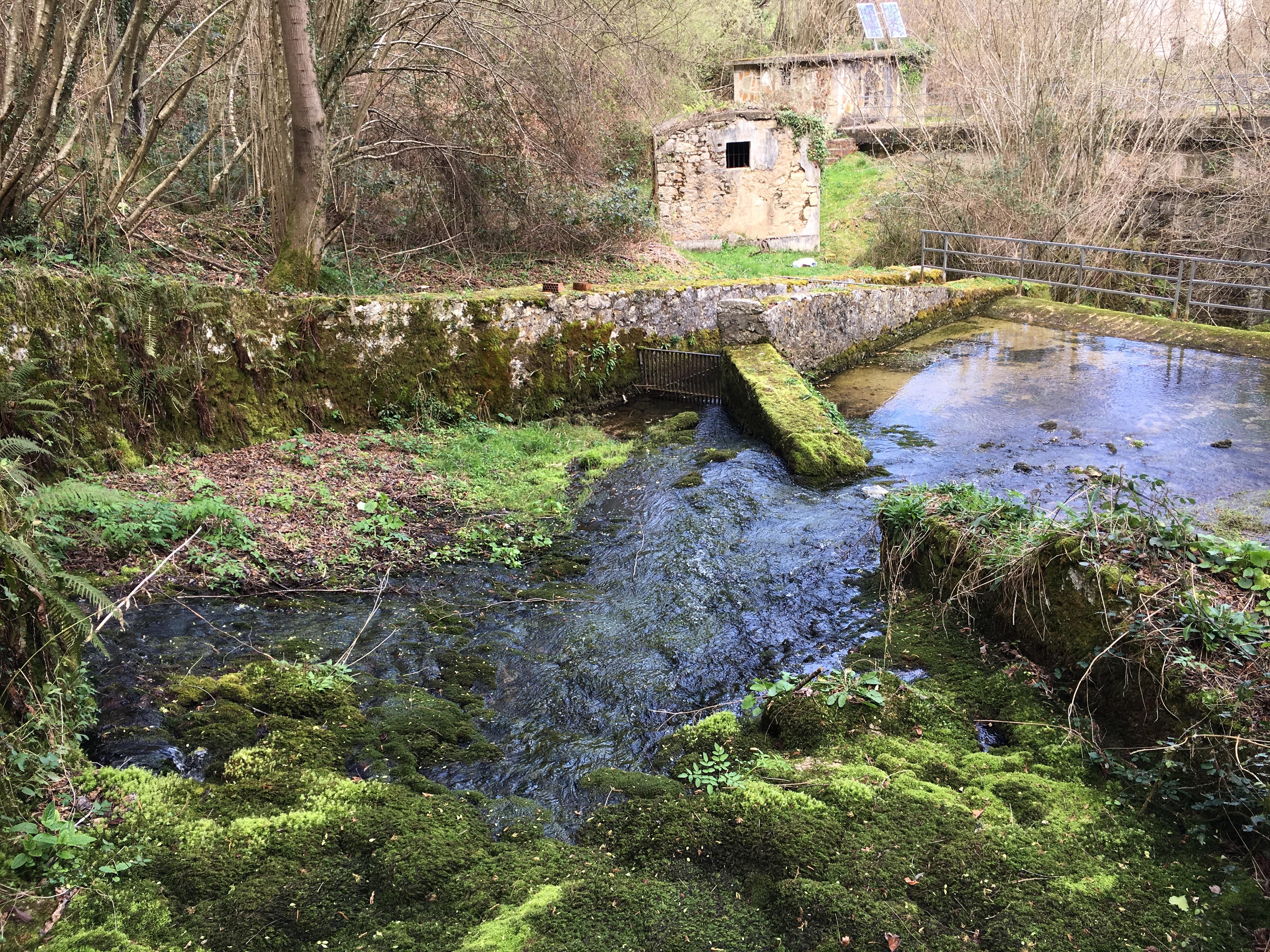 Coluvión de Llamo: Manantial del río Llamo